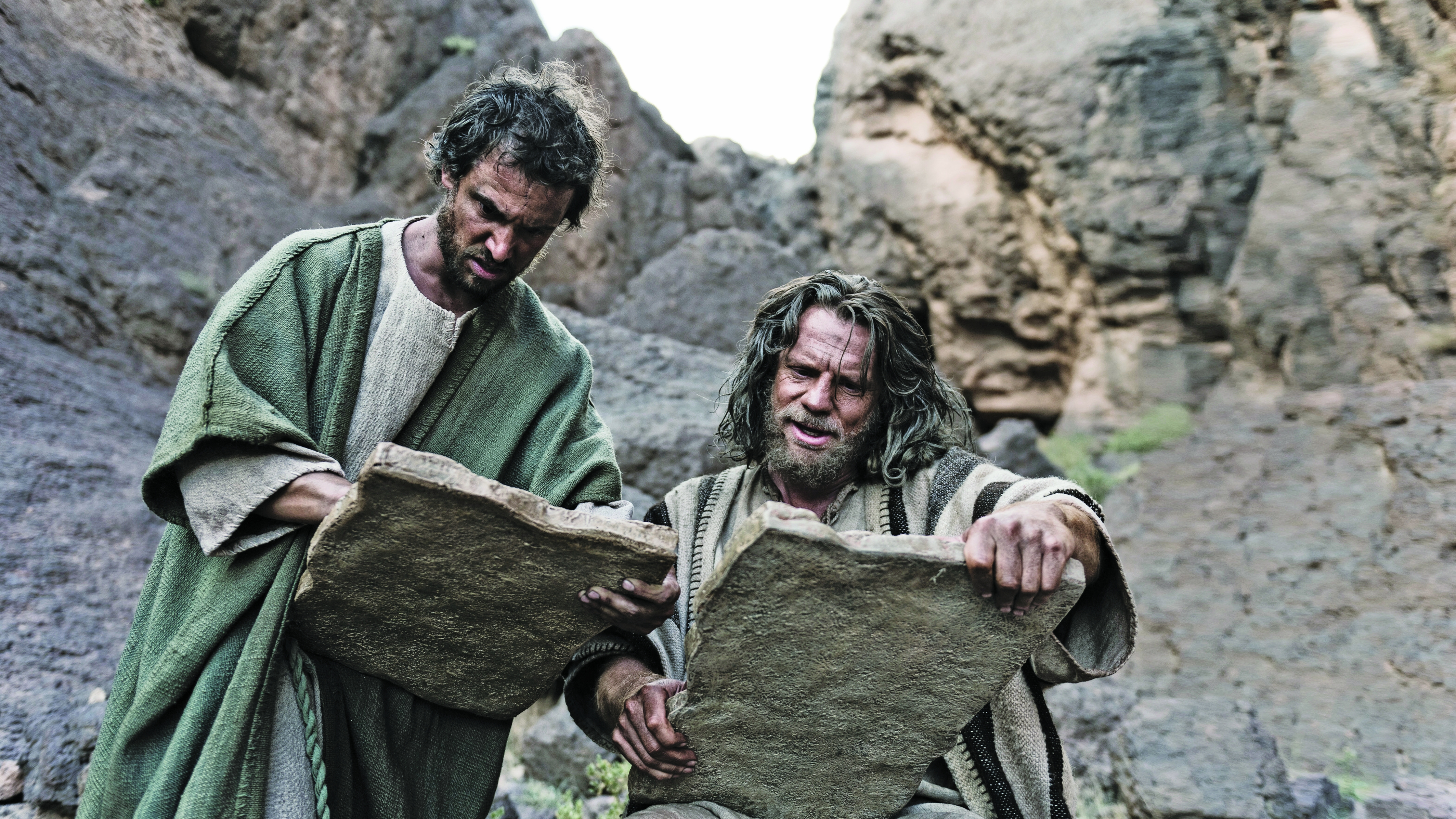 Why did Joshua put the stone of testimony under the oak ...